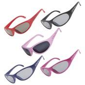 太陽眼鏡 (4)