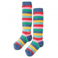有機棉及膝襪【嫩彩虹條紋】2-10Y